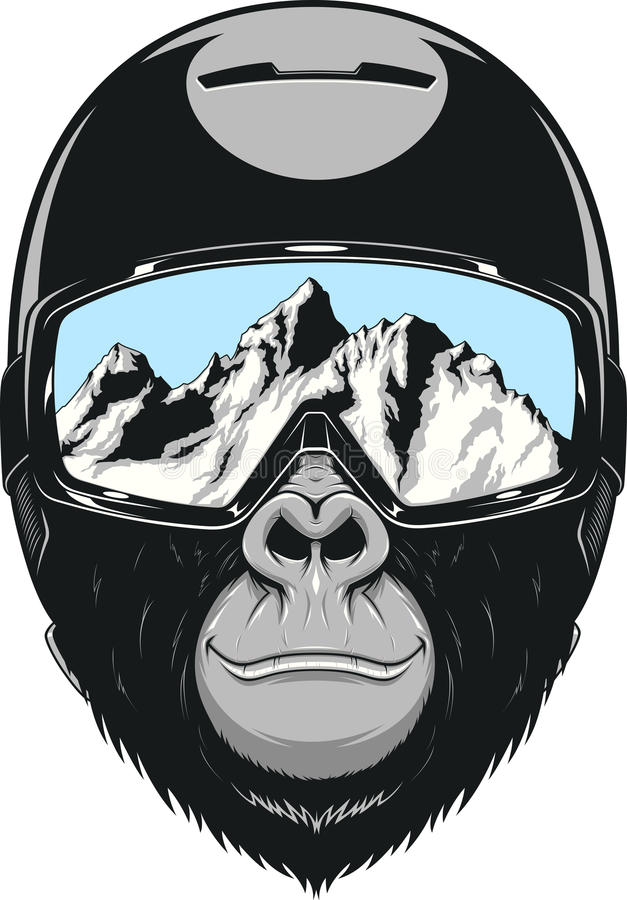 Monkey wearing a helmet vector illustration