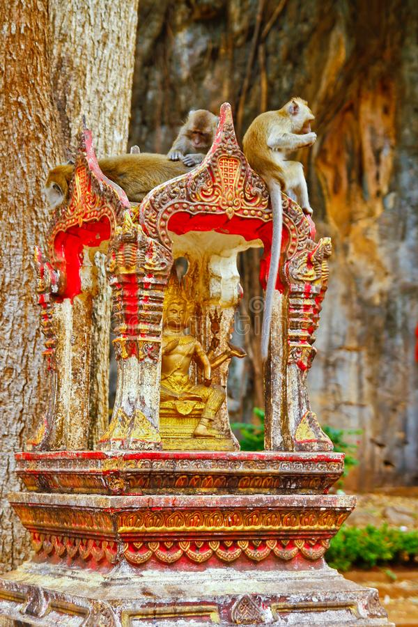 Monkeys have rest on a Brahma spirit house San Phra Brahm. Thailand stock image
