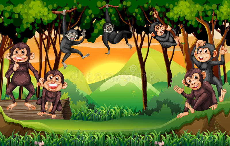 Monkeys l'arbre s'élevant dans la jungle illustration de vecteur