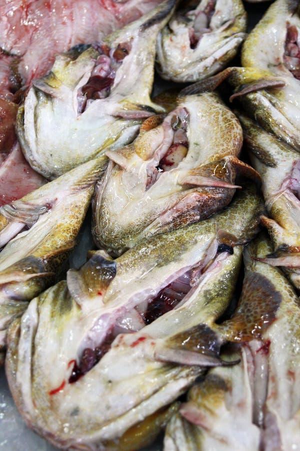 Monkfish på marknaden royaltyfri bild