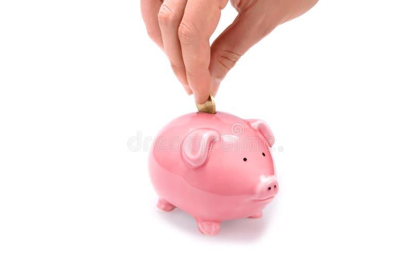 monnaie de banque porcine sauf images libres de droits