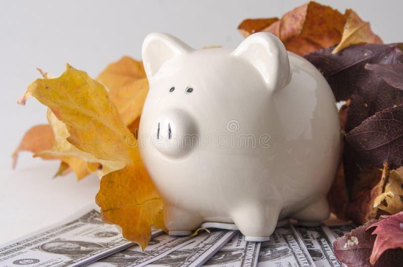 Monnaie fiduciaire et une tirelire en automne images libres de droits