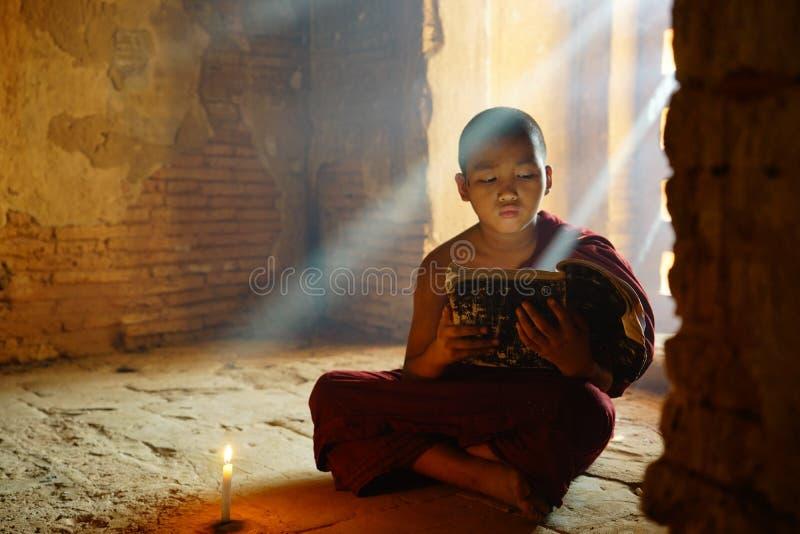 Monnik in Bagan, Myanmar royalty-vrije stock foto's