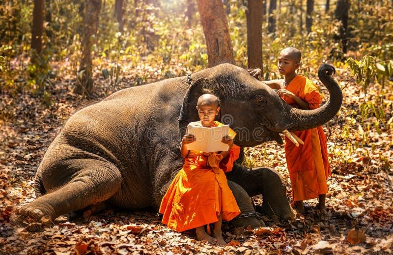 Monnik of Beginners het bestuderen Twee beginners lezen een boek, en een grote olifant met bosachtergrond, het District van Tha T royalty-vrije stock afbeelding