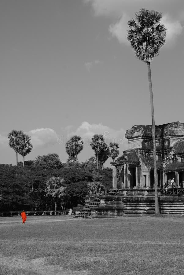 Monnik die Angkor Wat nadert royalty-vrije stock foto