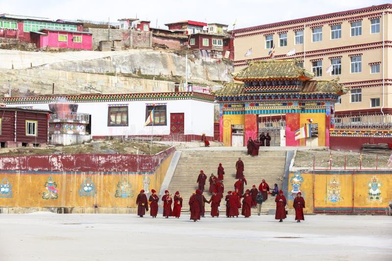 Monniken bij Yarchen-Geep in Sichuan, China stock afbeeldingen