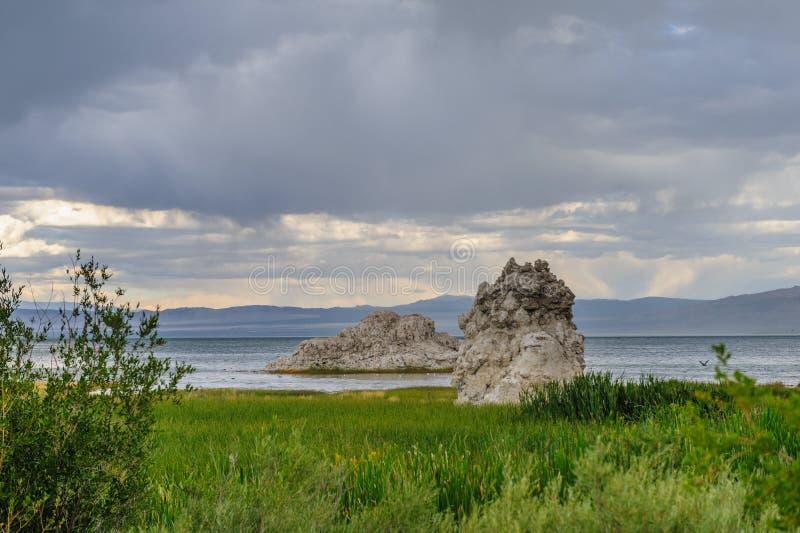 Mono линия побережья озера стоковая фотография rf