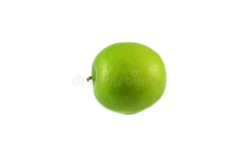 Mono Apple foto de archivo libre de regalías