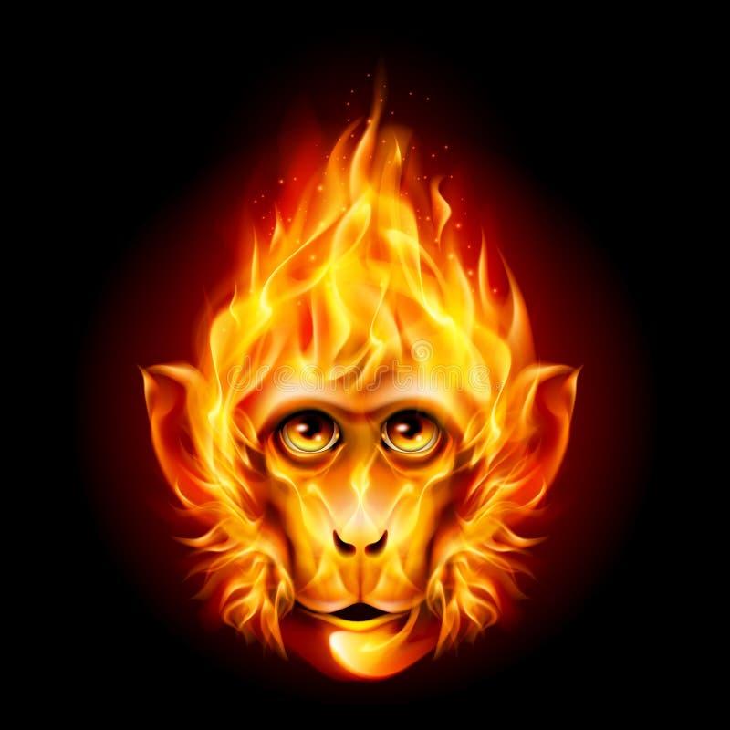 Mono del fuego del pelirrojo