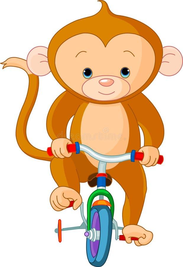Mono en la bicicleta ilustración del vector