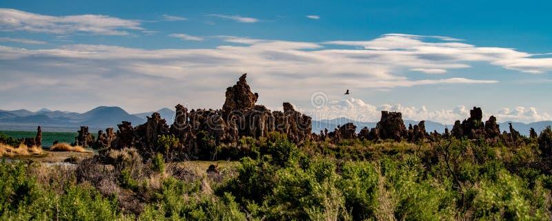 Mono jezioro, Południowy Tufa, Owens dolina, Kalifornia obraz stock