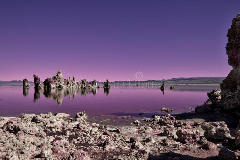 Mono lago extranjero imagen de archivo libre de regalías
