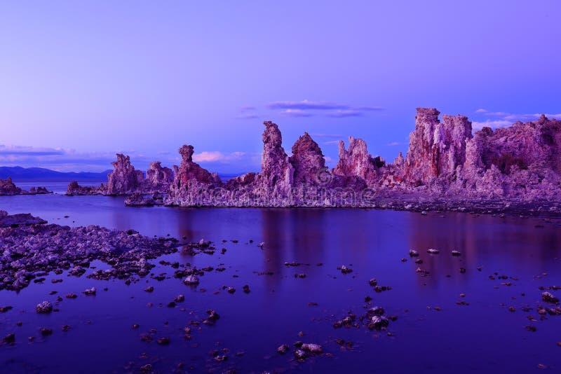 Mono lago - Tuffas sul fotos de stock royalty free