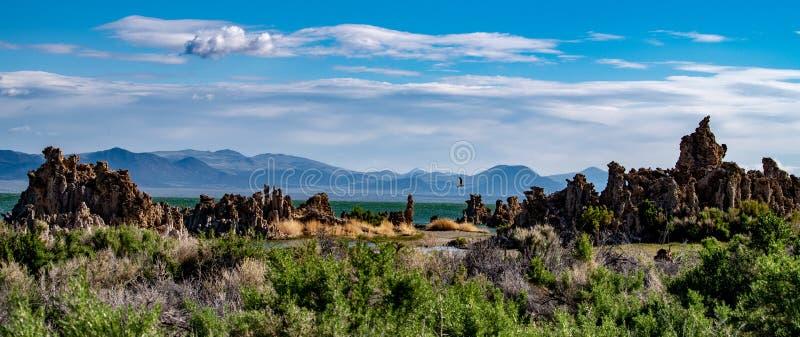 Mono lago, tufo sul, vale de Owens, Califórnia fotografia de stock royalty free