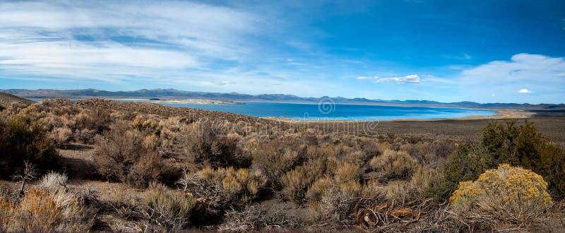 Mono panorama do lago fotos de stock royalty free
