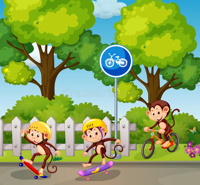 Mono que monta una bicicleta y un monopatín stock de ilustración