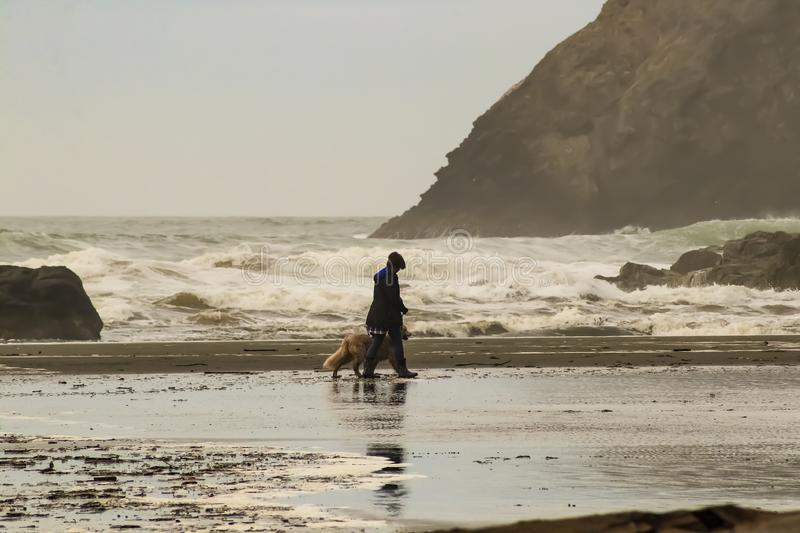 Monochomatic view of turbulent ocean and giant rocks with unrecognizable woman in rainboots and golden retriever dog walking on we stock image