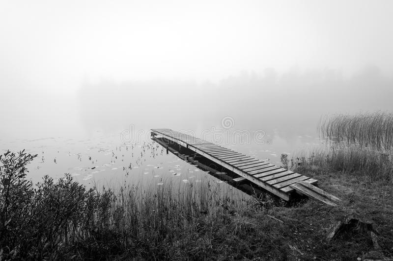 Monochromatic autumn view for Swedish lake stock photography