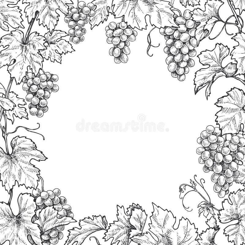 Monochromatyczna Gronowa gałąź kwadrata rama ilustracji