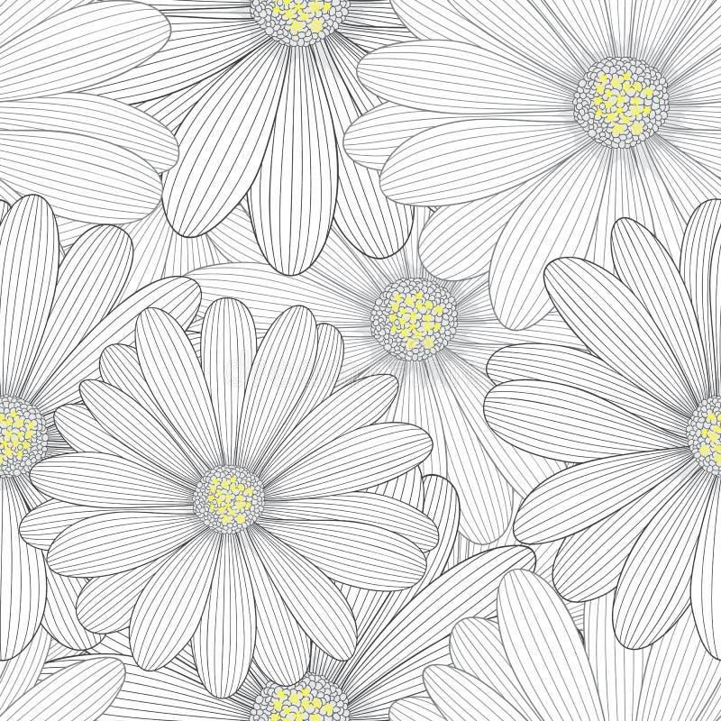 Monochromatycznego bezszwowego rysunku kwiecisty tło z kwiat stokrotkami ilustracji