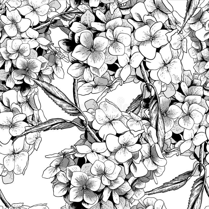 Monochromatyczny Bezszwowy tło z hortensją ilustracji