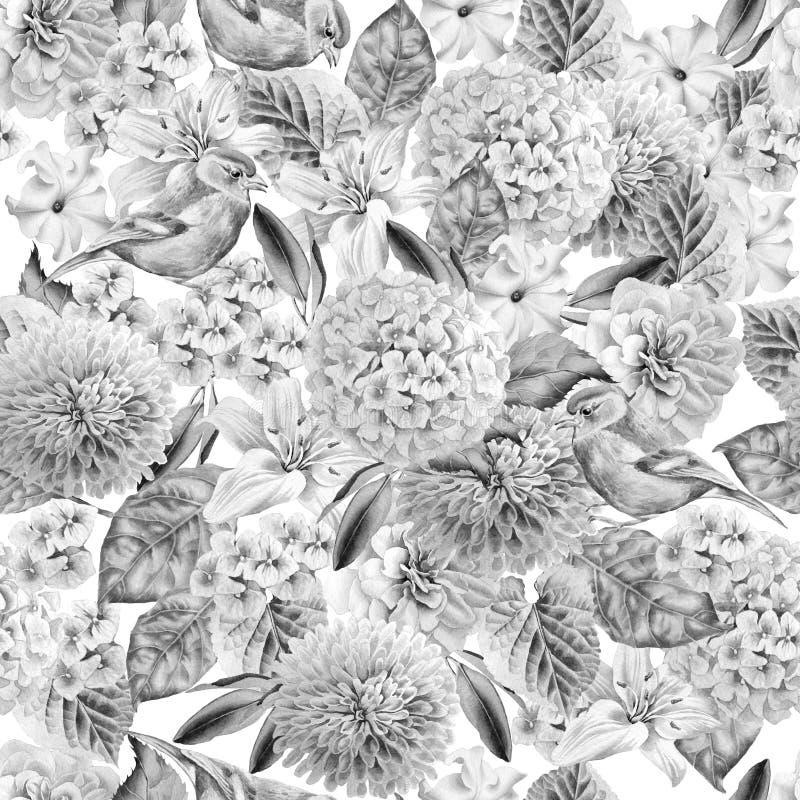 Monochrome безшовная картина с птицами и цветками hydrangea Поднял Лилия петунья изображение иллюстрации летания клюва декоративн иллюстрация штока
