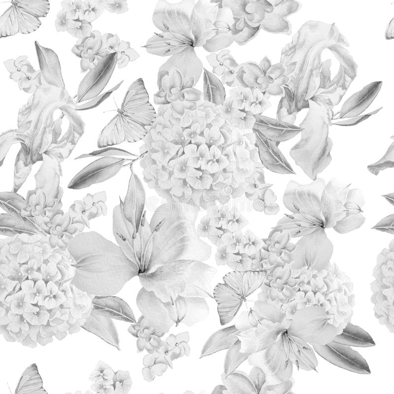 Monochrome безшовная картина с цветками Радужка Alstroemeria hydrangea Бабочки изображение иллюстрации летания клюва декоративное иллюстрация вектора