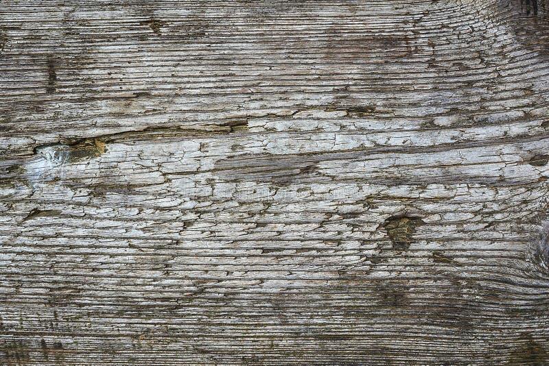 Monochrome деревянные предпосылка и текстура стоковые изображения rf