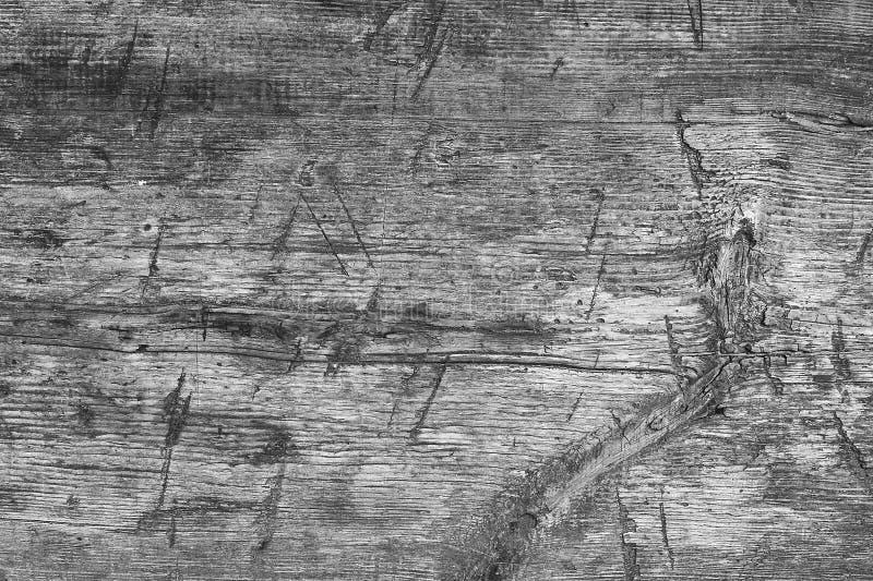 Monochrome деревянные предпосылка и текстура стоковое изображение