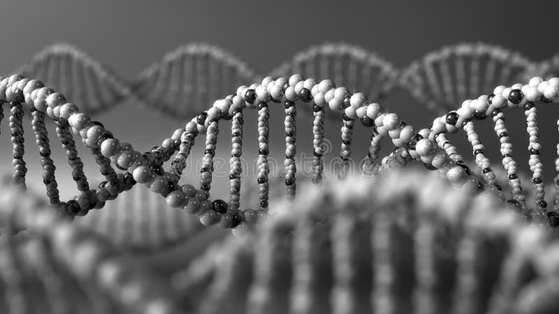 Monochrome молекулы дна Генетическое заболевание, современная наука или молекулярные концепции диагностик перевод 3d стоковые фото