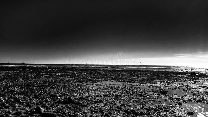 Monochrome пляжа стоковое фото rf
