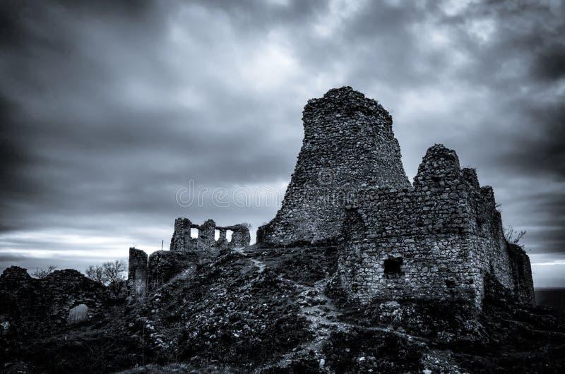 Monochrome руины замка Turna стоковое изображение rf