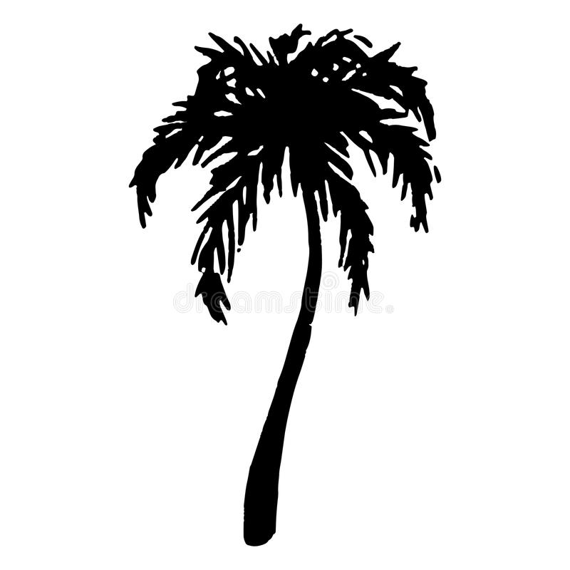 Free Monochrome Black And White Tropical Palm Tree Sea Ocean Beach Hand Drawn Sketch Vector Royalty Free Stock Images - 106579649