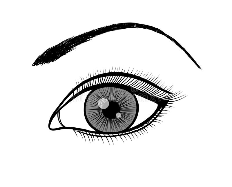 Monochrome black and white outline of a female eye stock illustration