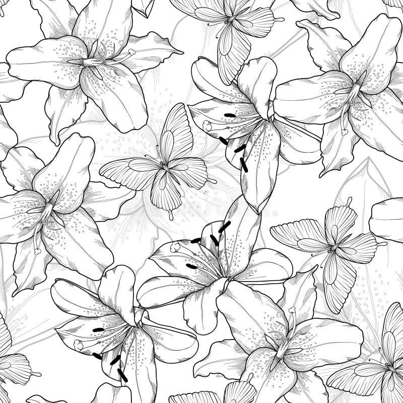 Monochrome bonito, fundo sem emenda preto e branco com lírios e borboletas Linhas de contorno desenhados à mão ilustração royalty free