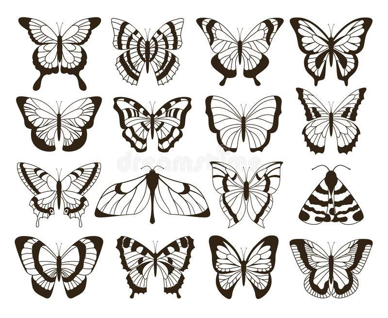 Monochrome butterflies. Black and white drawing, hand drawn tattoo shapes vintage collection. Vector butterfly isolated royalty free illustration