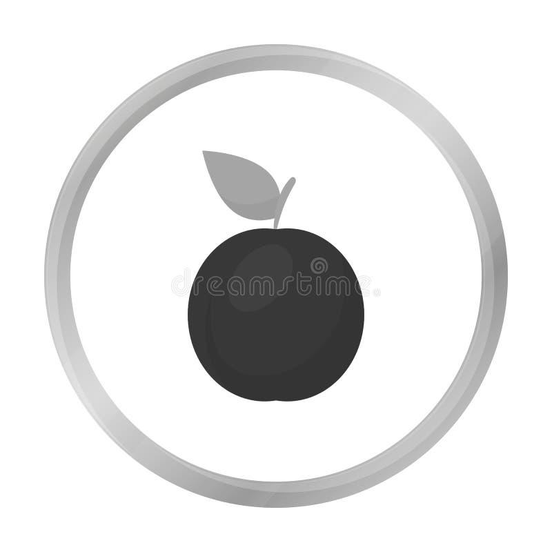 Monochrome do ícone da ameixa Ícone do fruto da chamuscadela ilustração royalty free