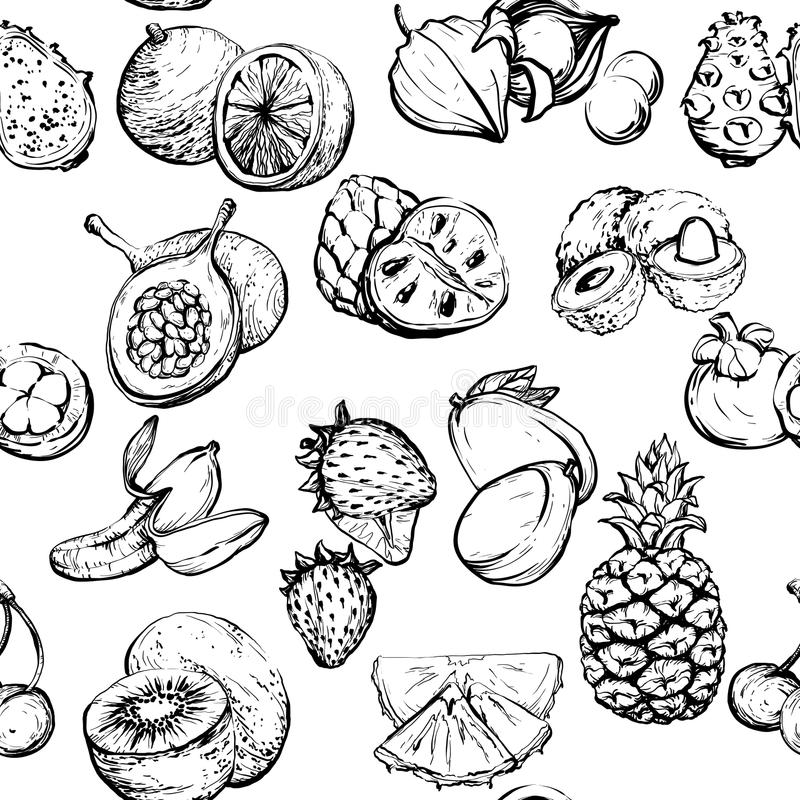 Monochrome exotic summer seamless pattern with fruit stock illustration