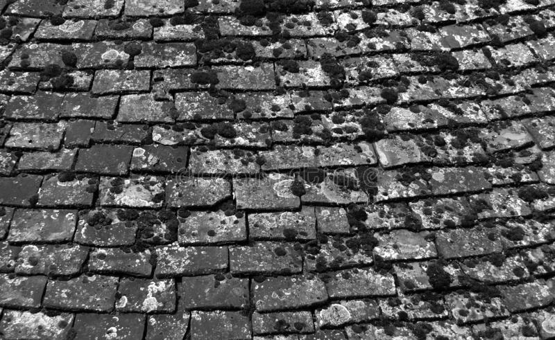 Monochrome image of old chipped roof tiles with moss in an overlapping pattern stock photography