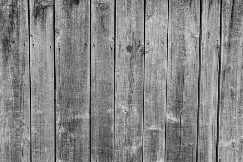Monochrome image, vertical pine wood fence close up shot on natural light. Image for background stock photography