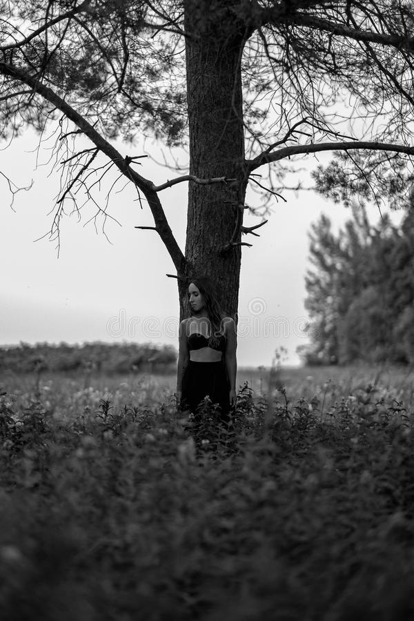 Monochrome photo of european woman standing alone in forest stock image