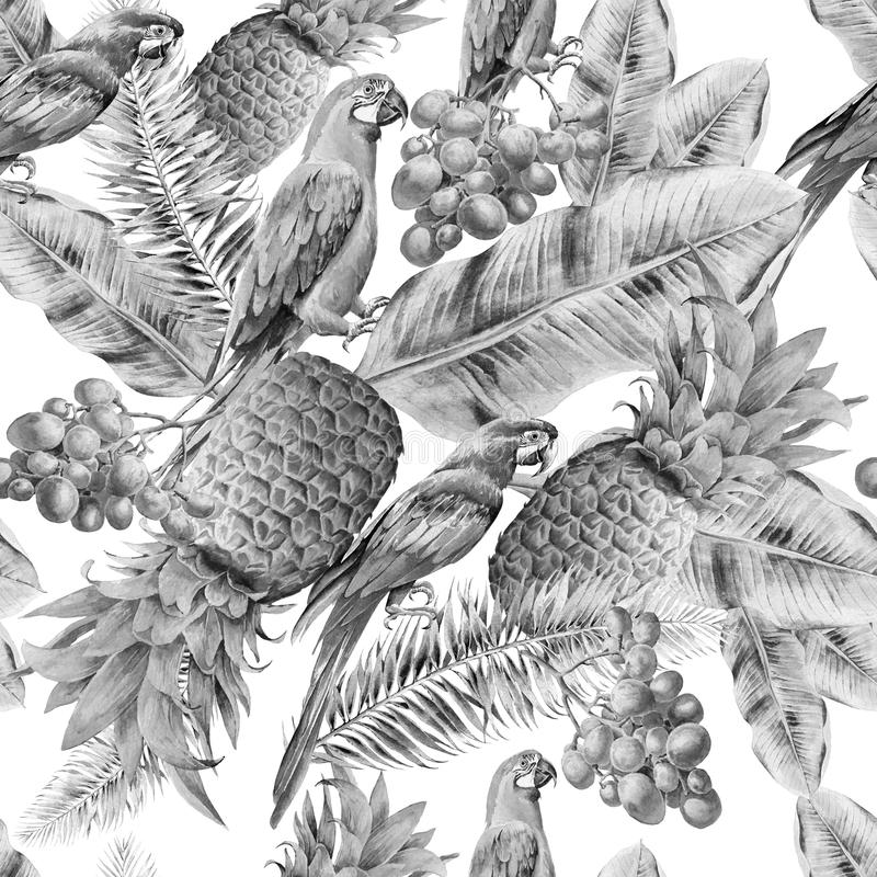 Monochrome seamless pattern with parrots leaves and fruits. Palm. Pineapple. Grapes. Watercolor illustration. stock illustration