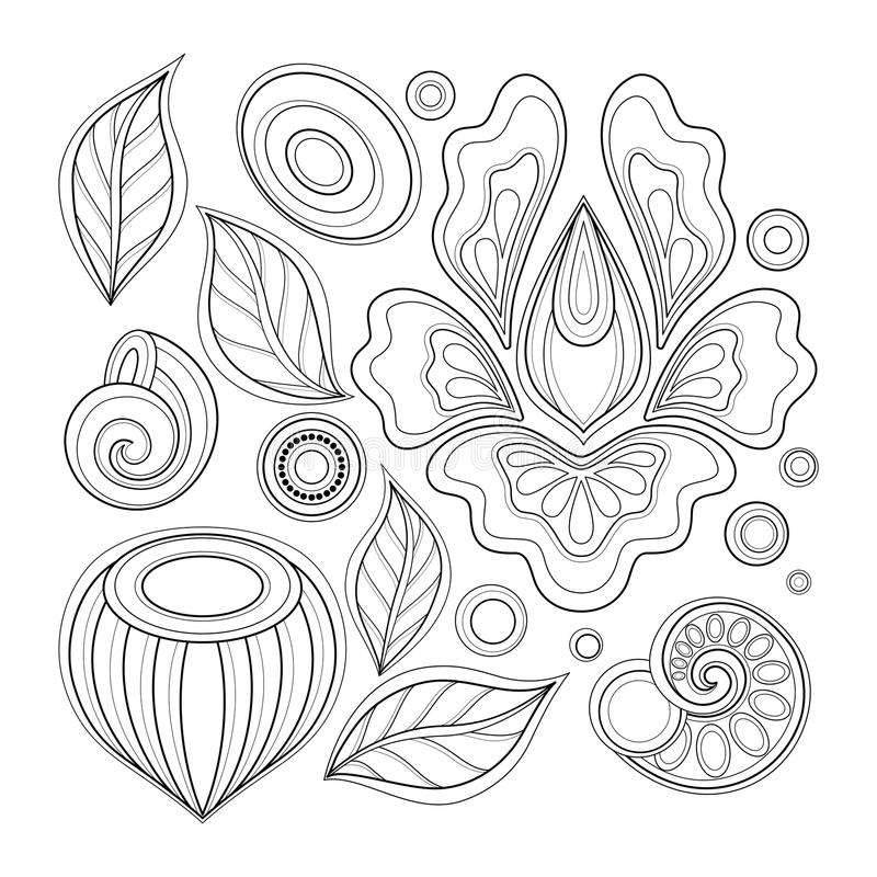 Monochrome Set of Floral Design Elements in Doodle Line Style. Collection of Flowers, Leaves and Swirls. Elegant Natural Motifs. Coloring Book Page. Vector stock illustration