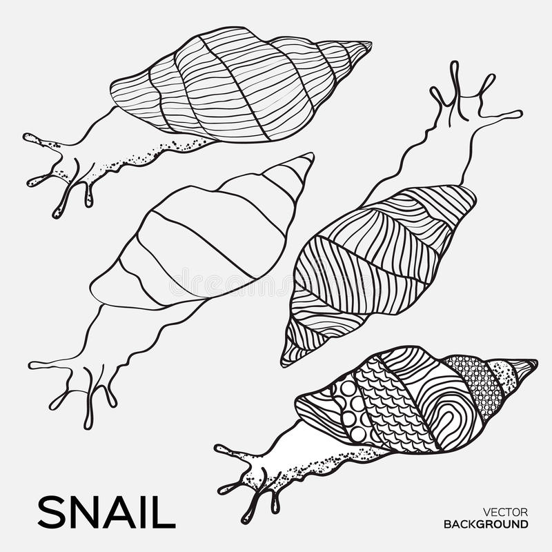 Monochrome silhouette of snail drawing outline. royalty free illustration