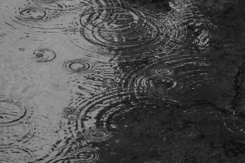Monochrome watter ripple royalty free stock images