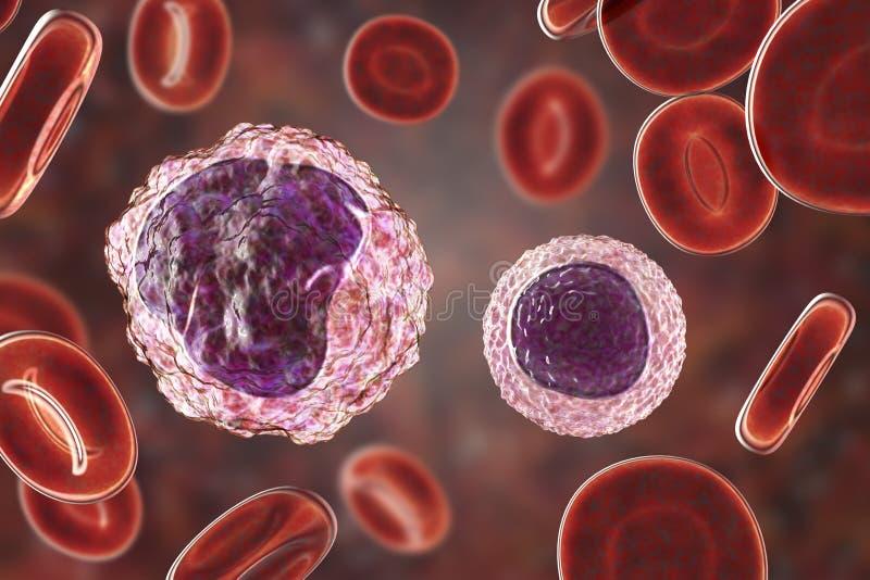 Monocyte et lymphocyte entourés par les globules rouges illustration stock