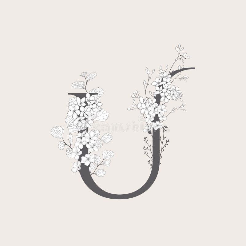 Monogramma e logo iniziali floreali di fioritura di vettore U royalty illustrazione gratis