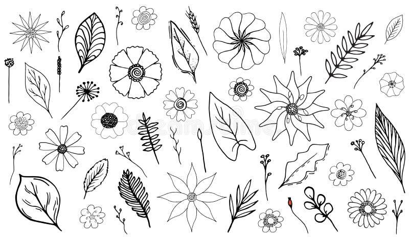 Monokrom botanisk uppsättning royaltyfri illustrationer