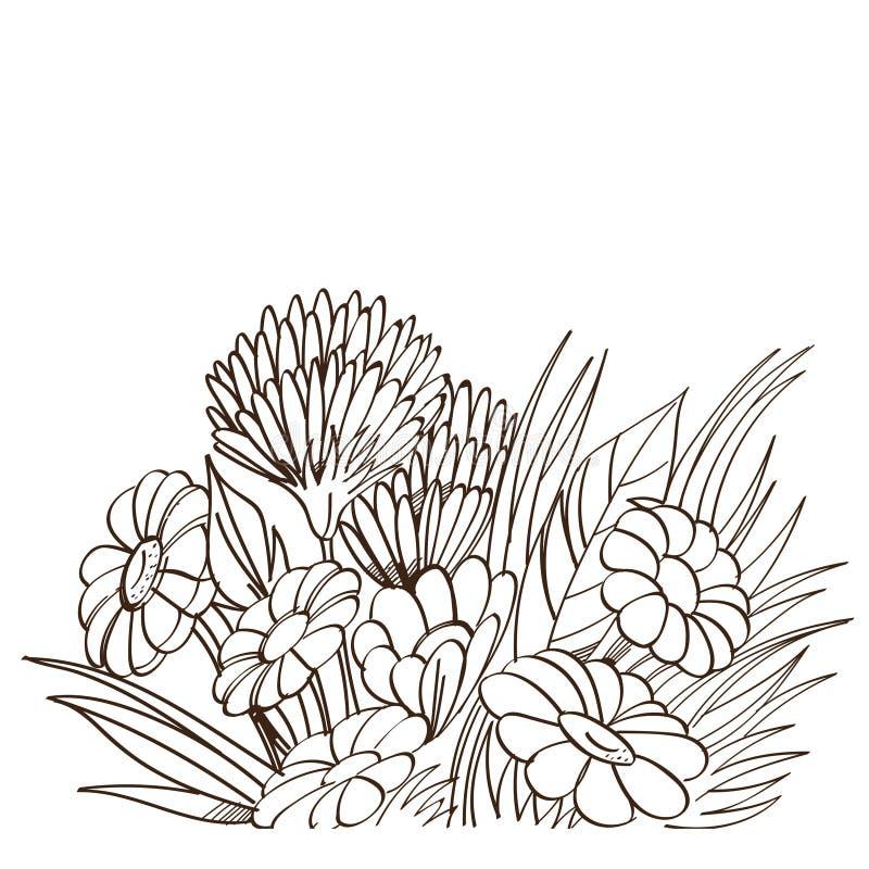 Monokrom bukett för vektor av kamomillen isolerad white för bakgrundscogwheel illustration stock illustrationer
