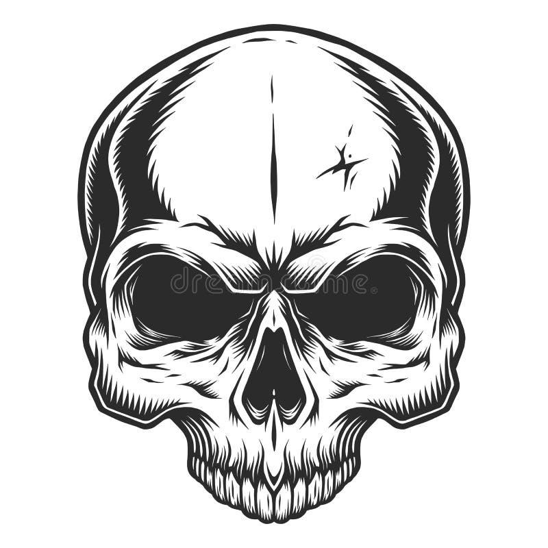 Monokrom illustration av skallen stock illustrationer
